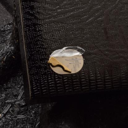Particolare del cofanetto con logo e richiamo del gioiello